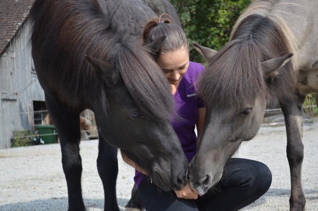 A Course in Lungeing – Franziska and Aska