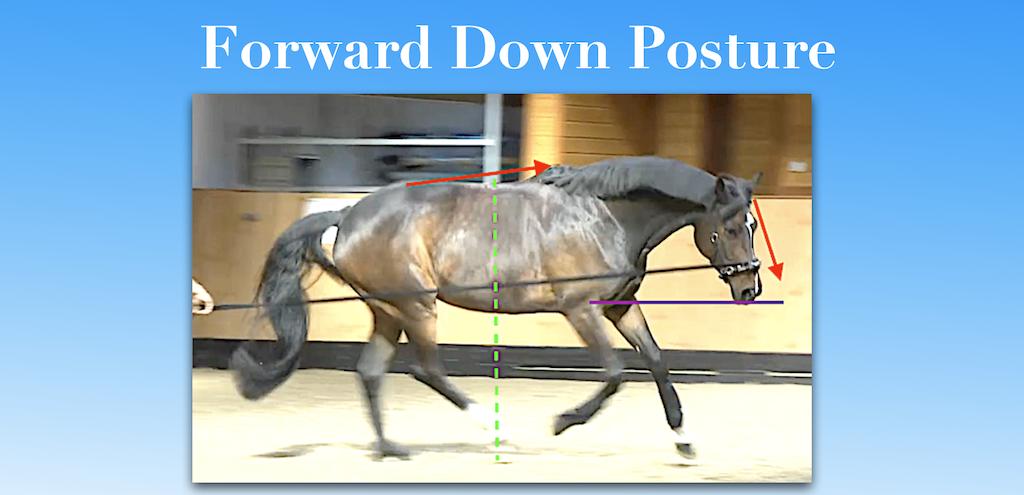 Forward Down Posture