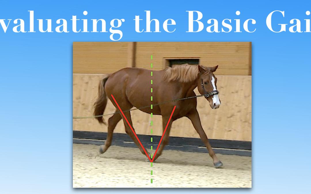 Evaluating the Basic Gaits